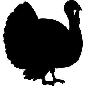 Turkey Feed and Sales - Double JB Feeds