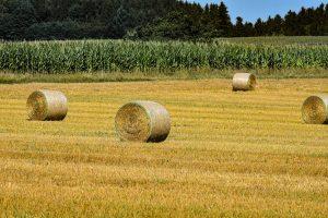 Farm Supplies - Double JB Feeds