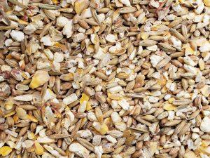 Poultry Scratch Grain - Double JB Feeds