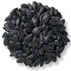 Black oil Sunflower Seeds - Double JB Feeds