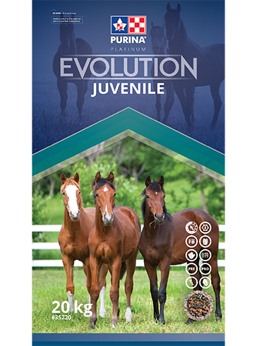 Evolution Juvenile - Double JB Feeds