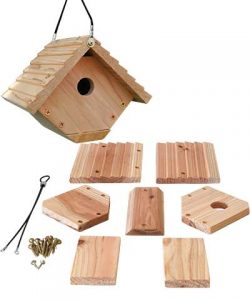 DIY Wren House Kit - Double JB Feeds