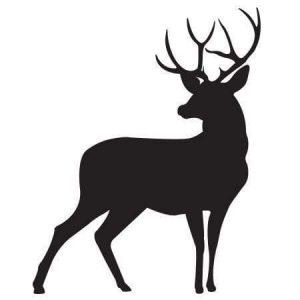 Deer Feed - Double JB Feeds