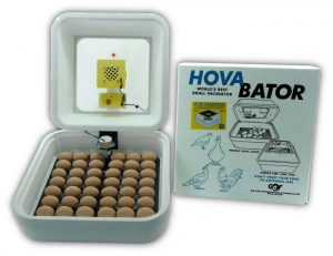Hova Bator Genesis Incubator - Double JB Feeds