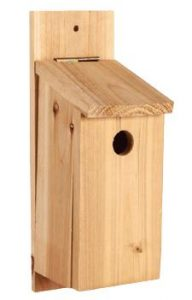 Wood Birdhouse DIY Kit - Double JB Feeds